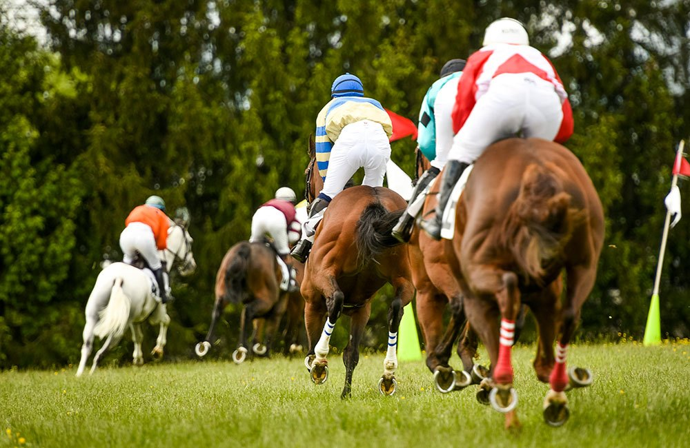 Horse Racing at Willowdale Steeple