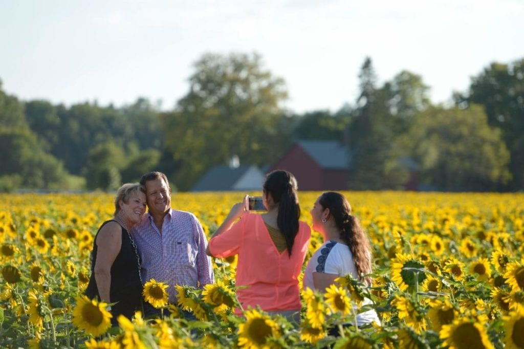 family taking a photo in a field of sunflowers
